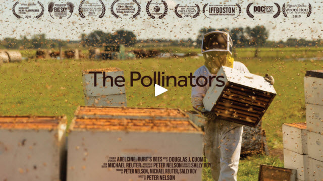 VIEW TRAILER:  https://www.thepollinators.net/festivals