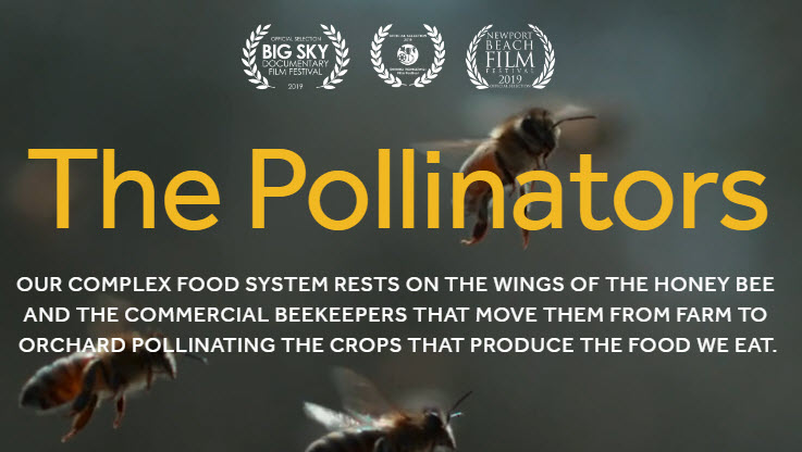 The Pollinnators Film.jpg