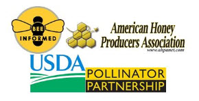 bee informed usda pollinator partnership.jpg