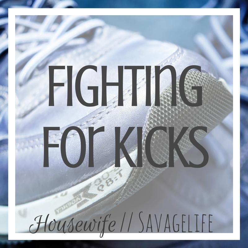 Fighting for Kicks.jpg
