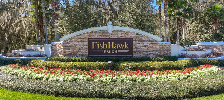fishhawk.jpg