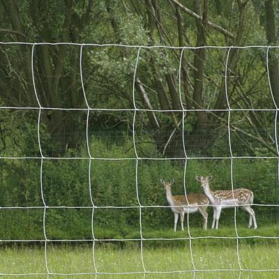 8' Net Deer Fence
