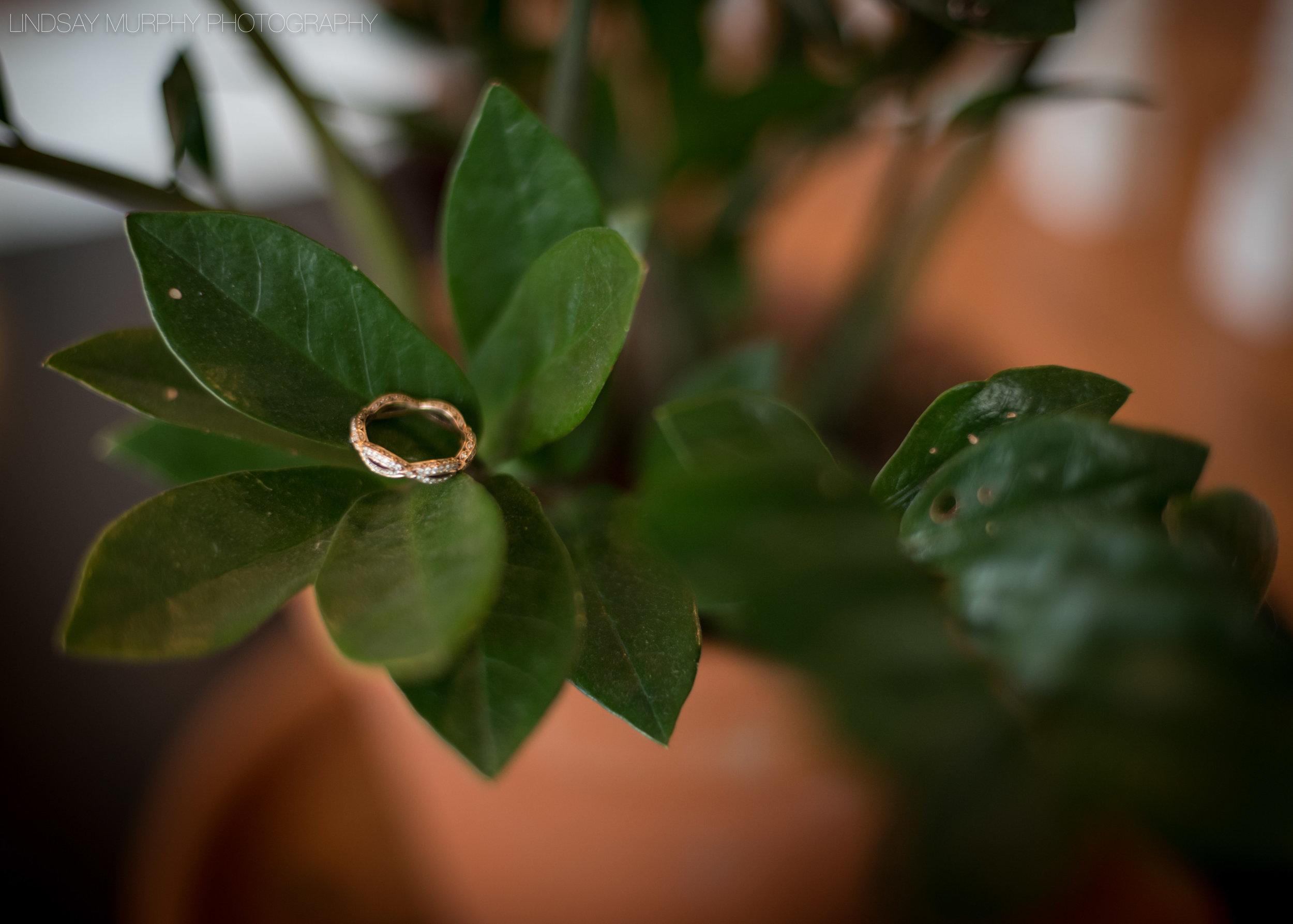 new_england_wedding-8.jpg