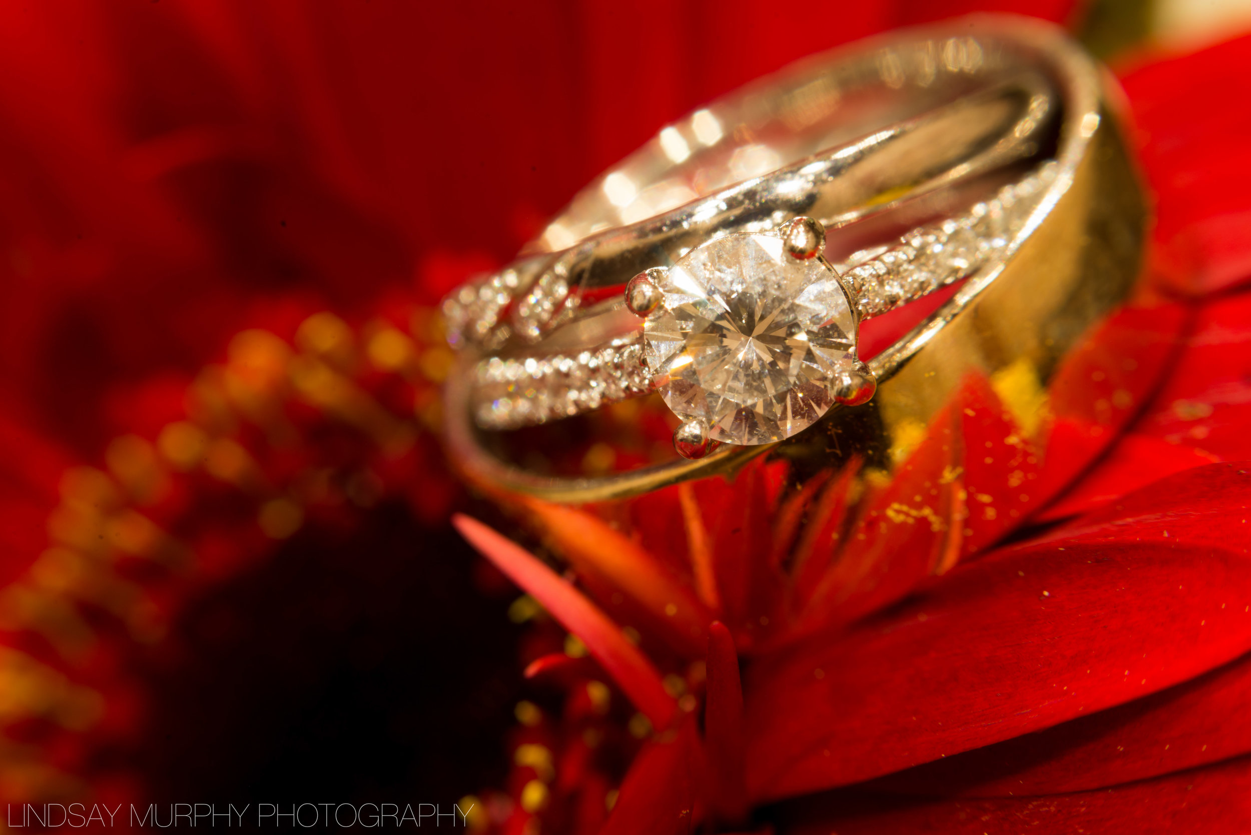 Tacoma_Wedding_photography-109.jpg