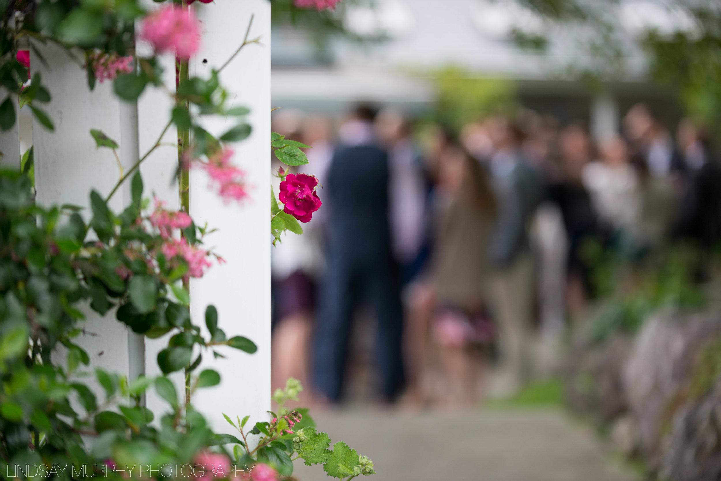 maine_wedding_photographer-420.jpg
