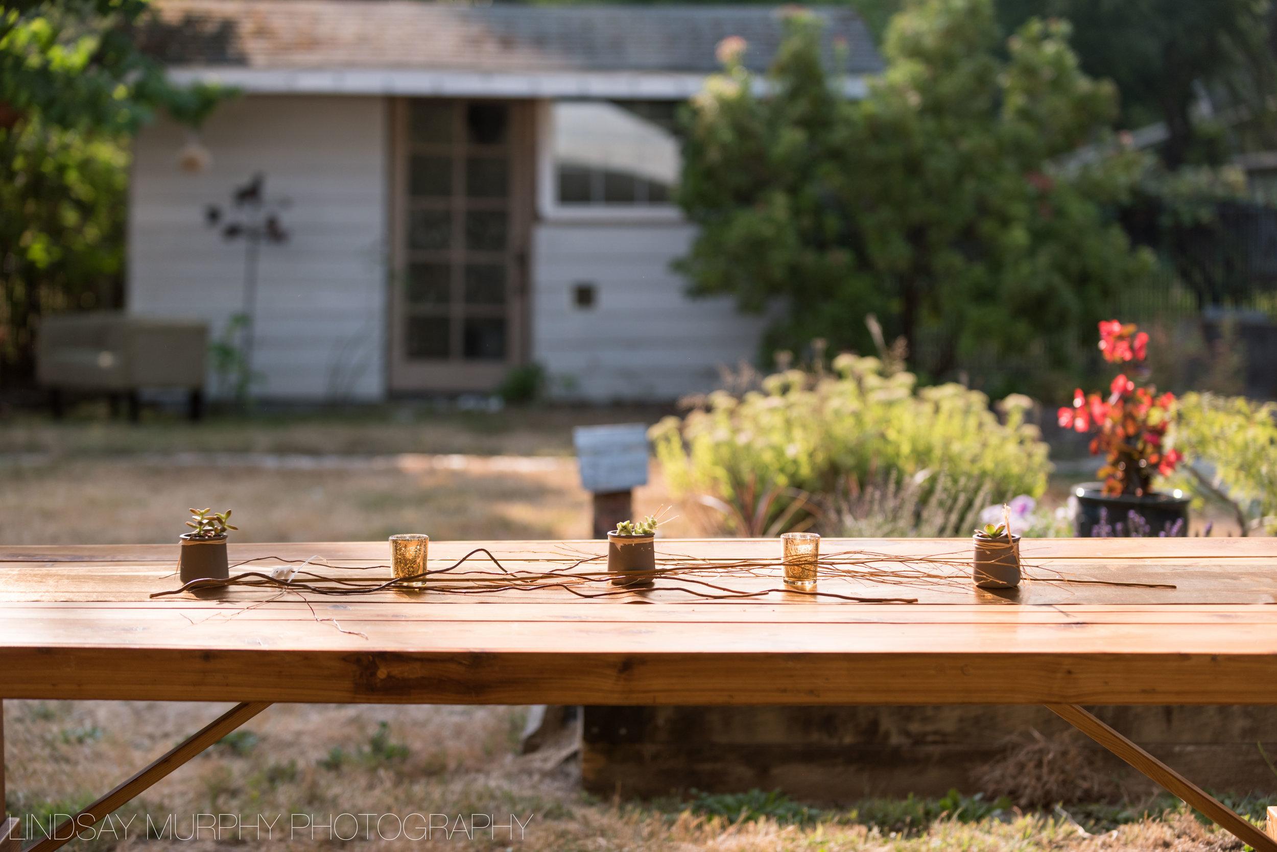Backyard_Wedding-25.jpg