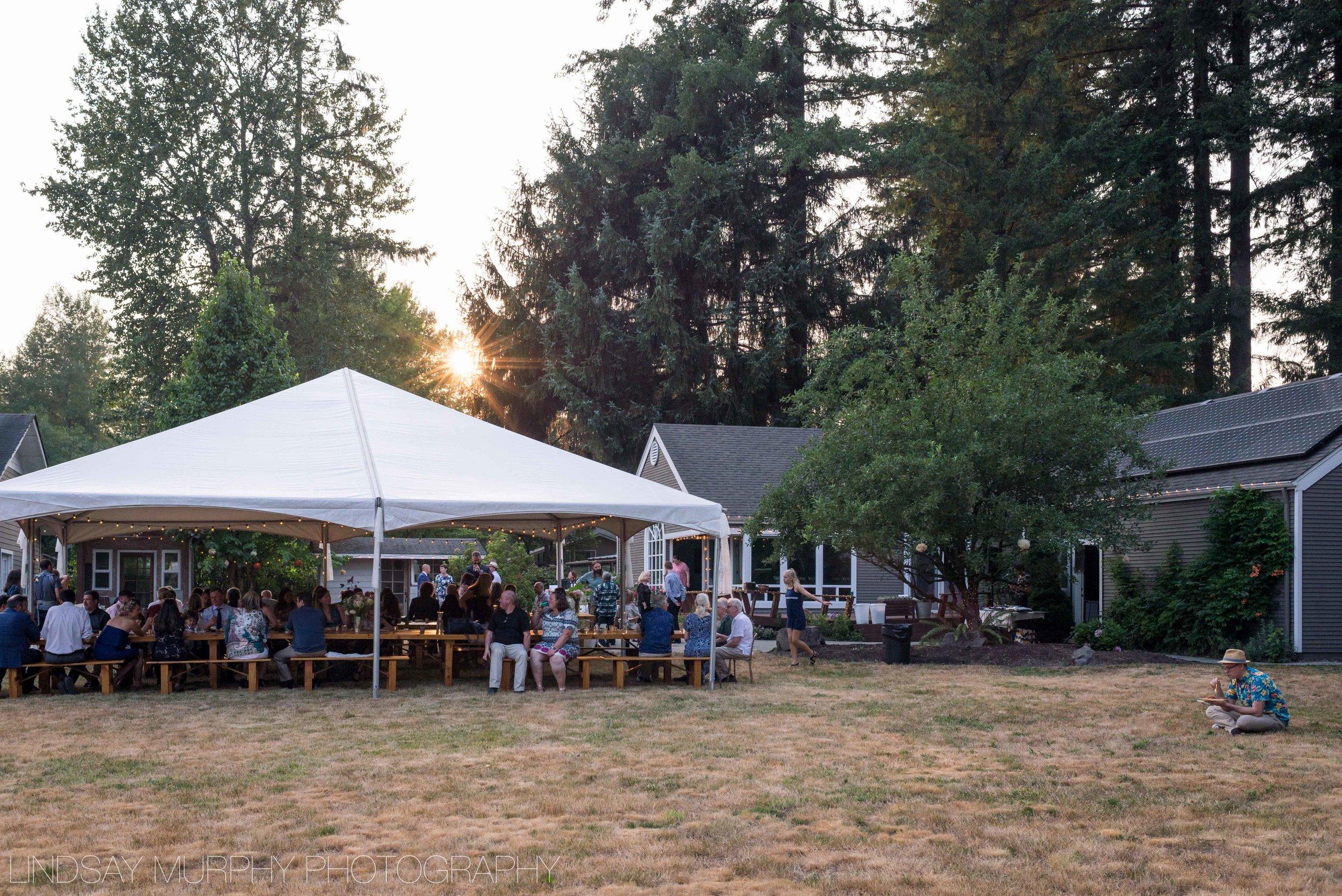 Backyard_Wedding-93.jpg