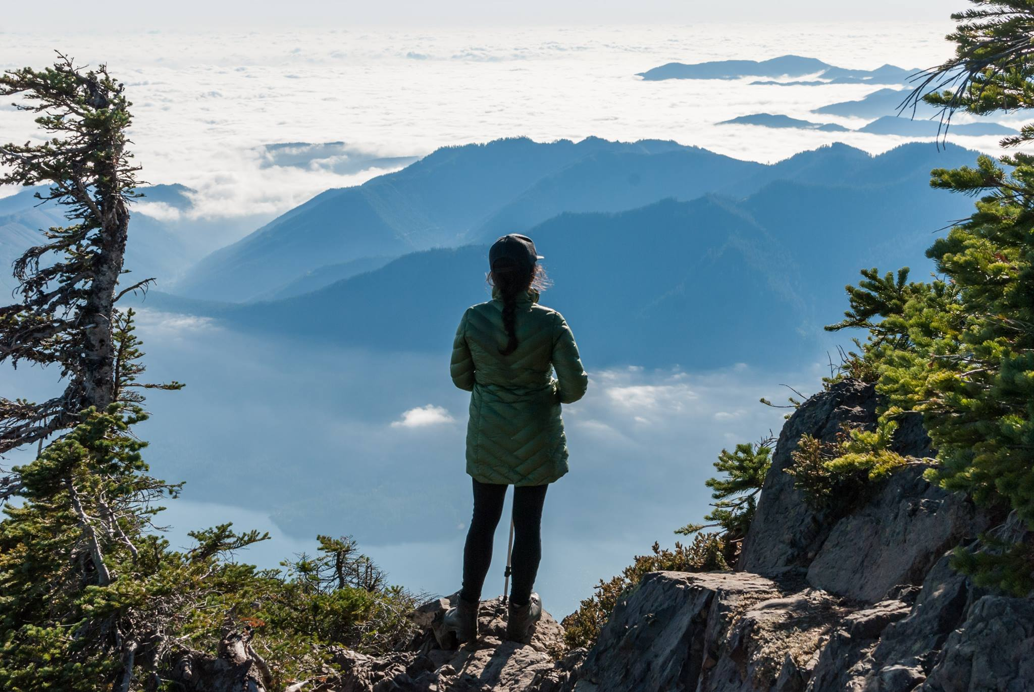 Mount Ellinor, Olympic National forest   WA