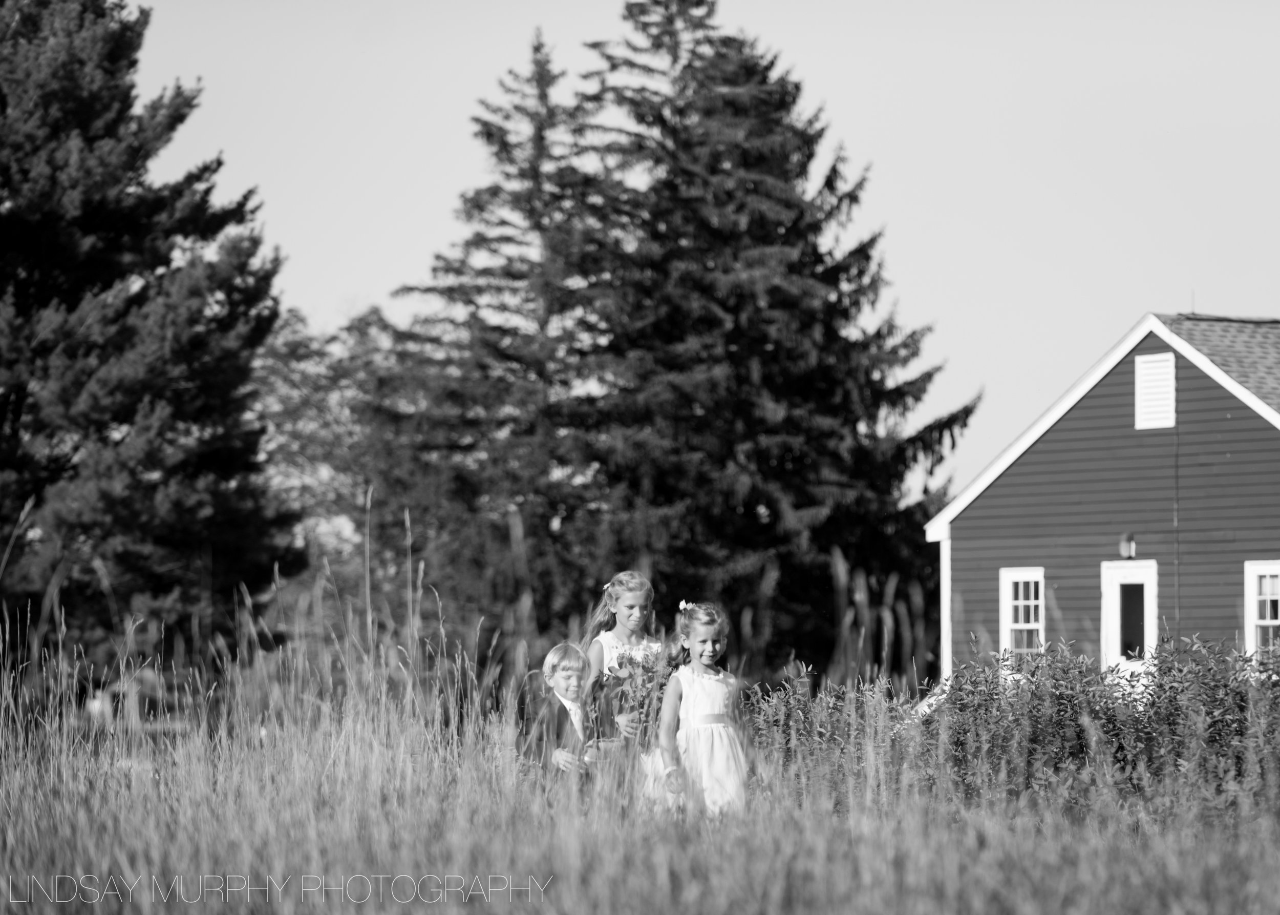 red_barn_hampshire_college_wedding-83.jpg