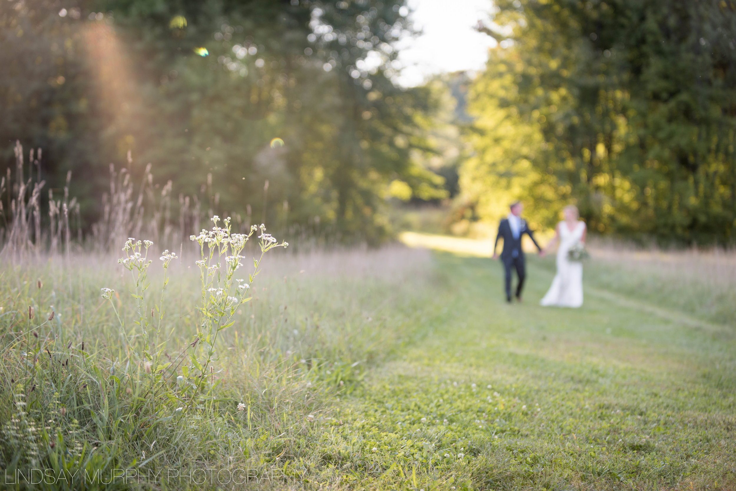 red_barn_hampshire_college_wedding-223.jpg
