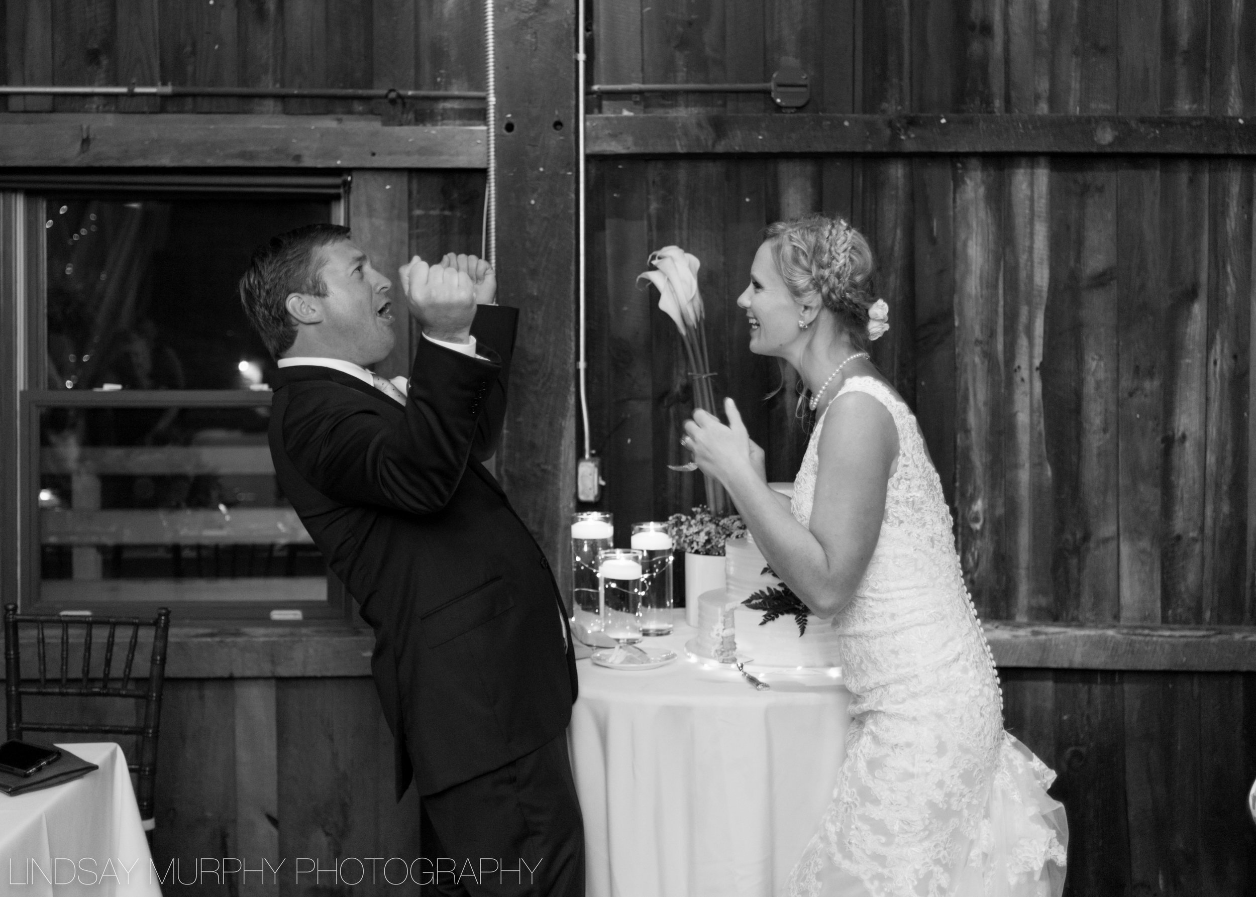 red_barn_hampshire_college_wedding-266.jpg