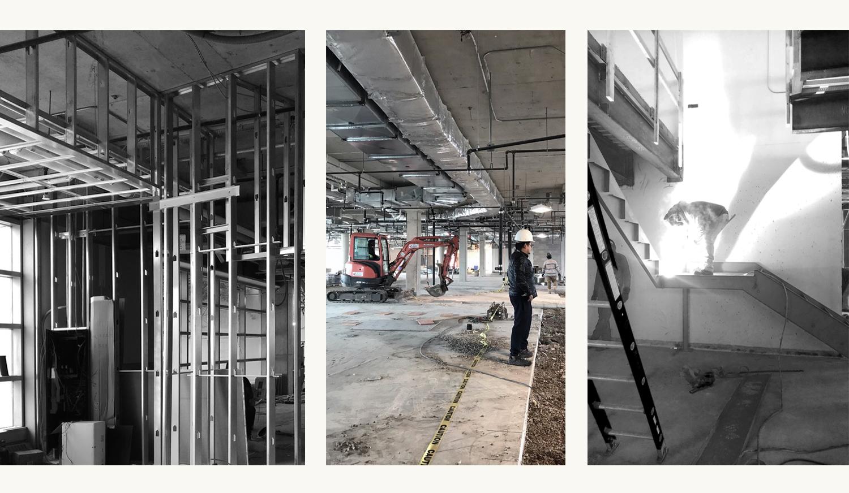 Canada_Toronto_Healthcare_Cardiology_Design_architect_Construction.jpg