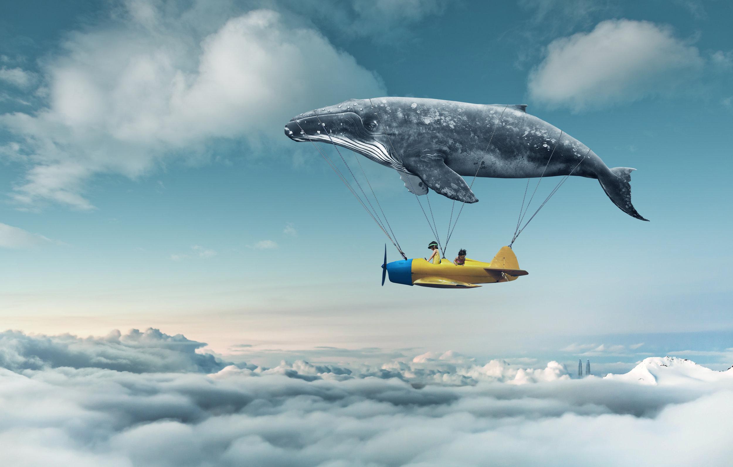 dream-whale.jpg