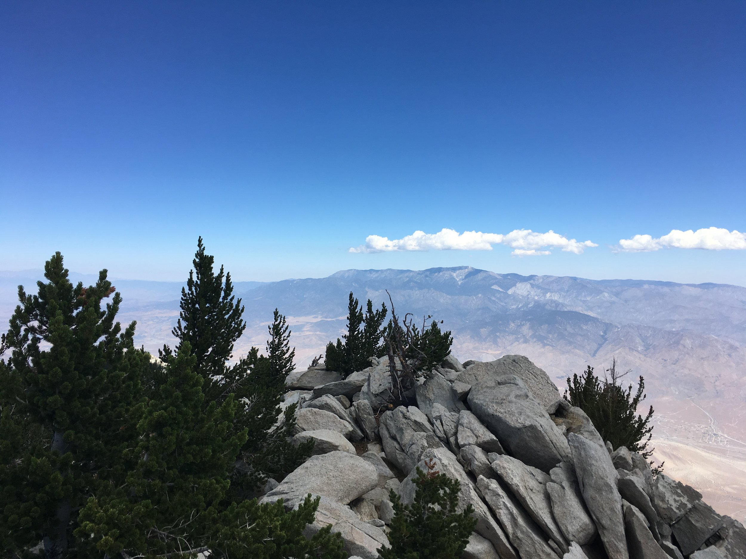 "Atop San Jacinto Peak, with a view of ""Old Grayback"""