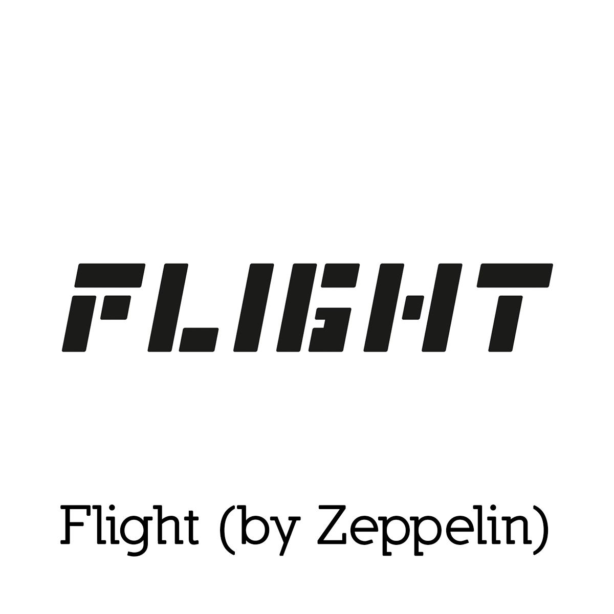 flight_resized-for-web.jpg