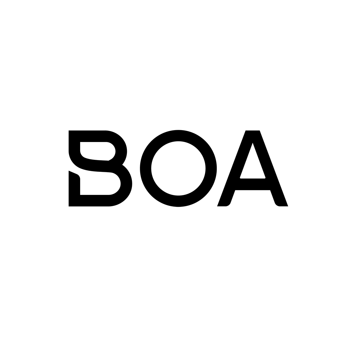 BOA_resized-for-web.jpg