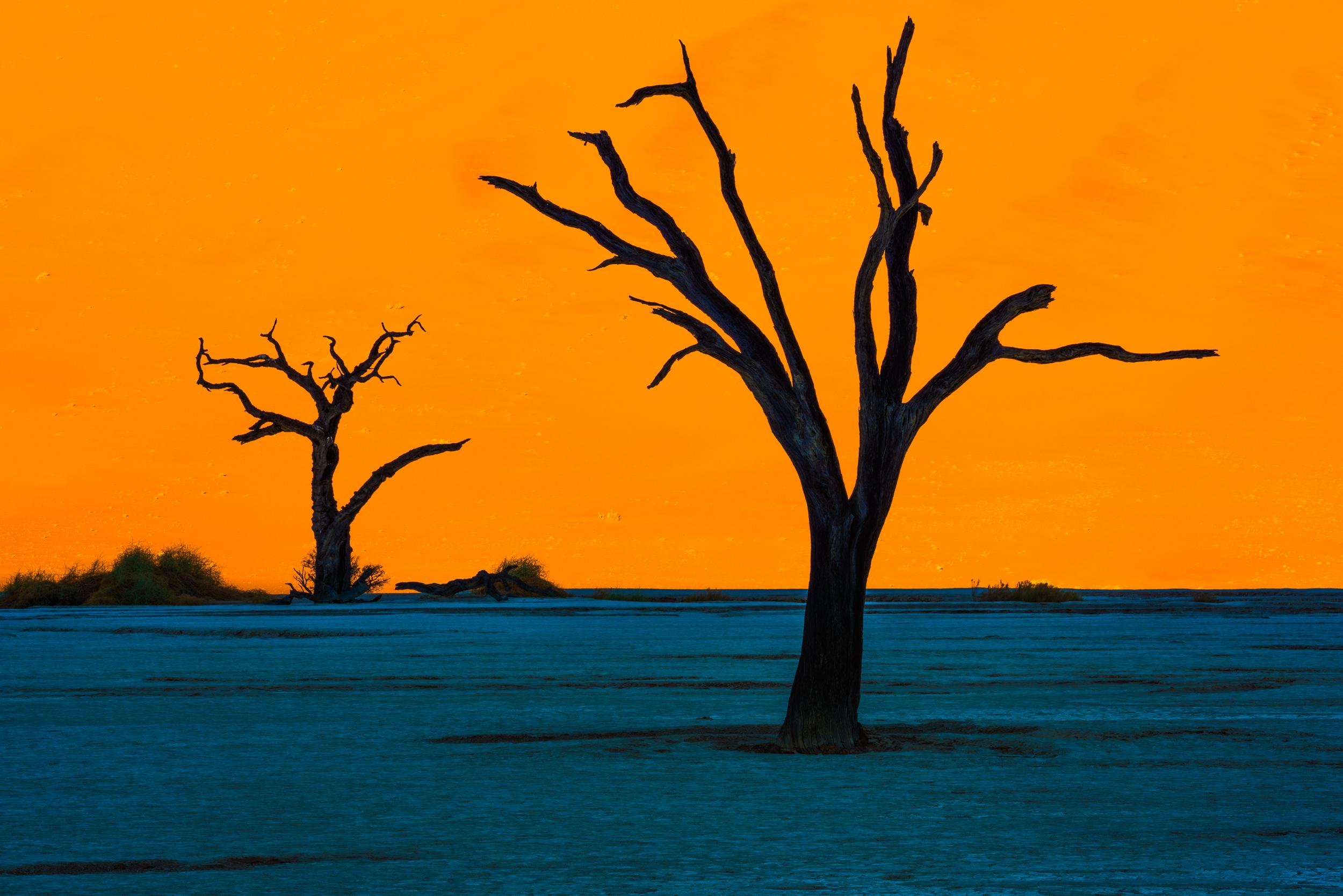 [2016 06 13] Namibia Sossusvlei (NIKON D810) 1579.jpg