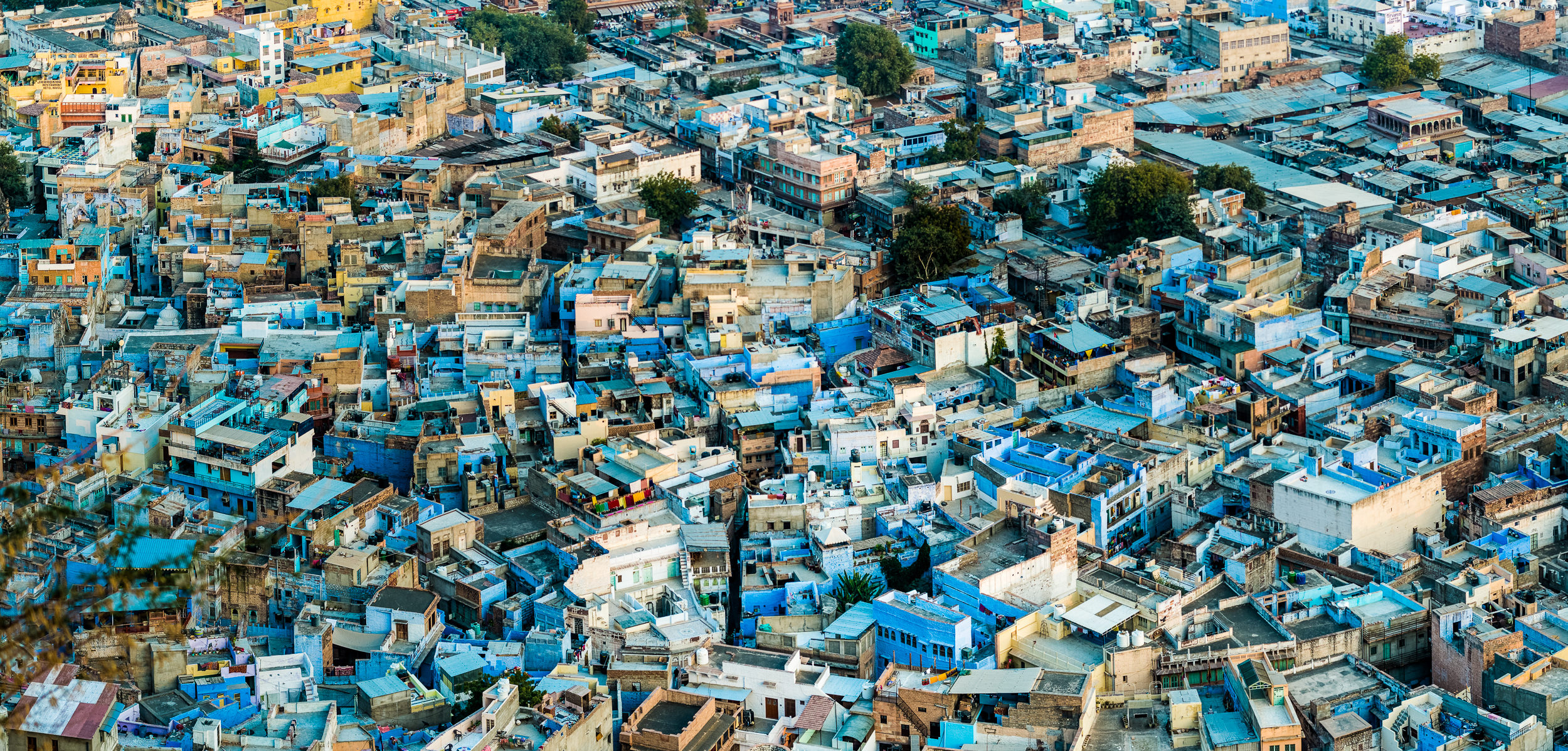 [2015 01 23] India 2015 Jodhpur (NIKON D800) 1734.jpg