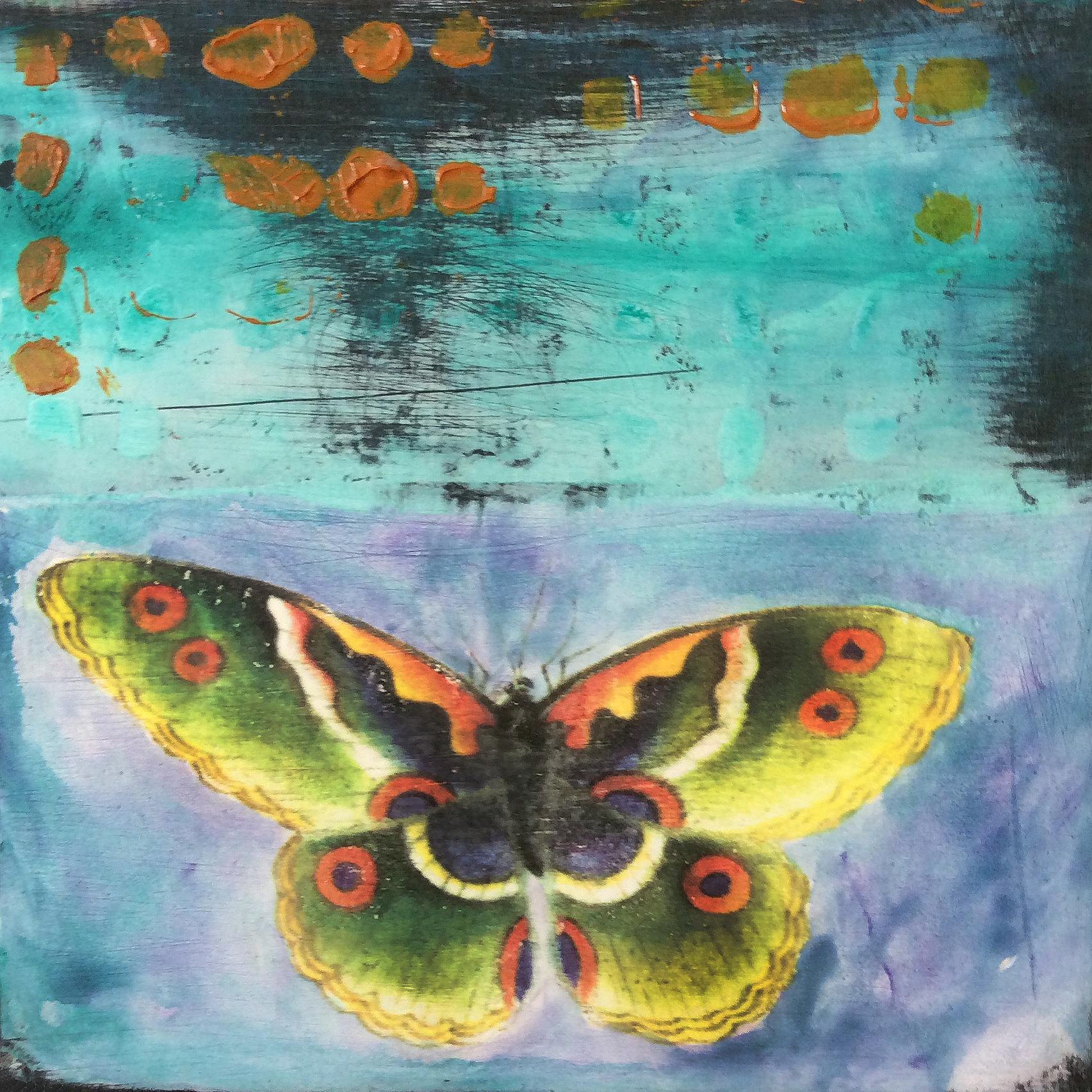 Butterfly #1.JPG