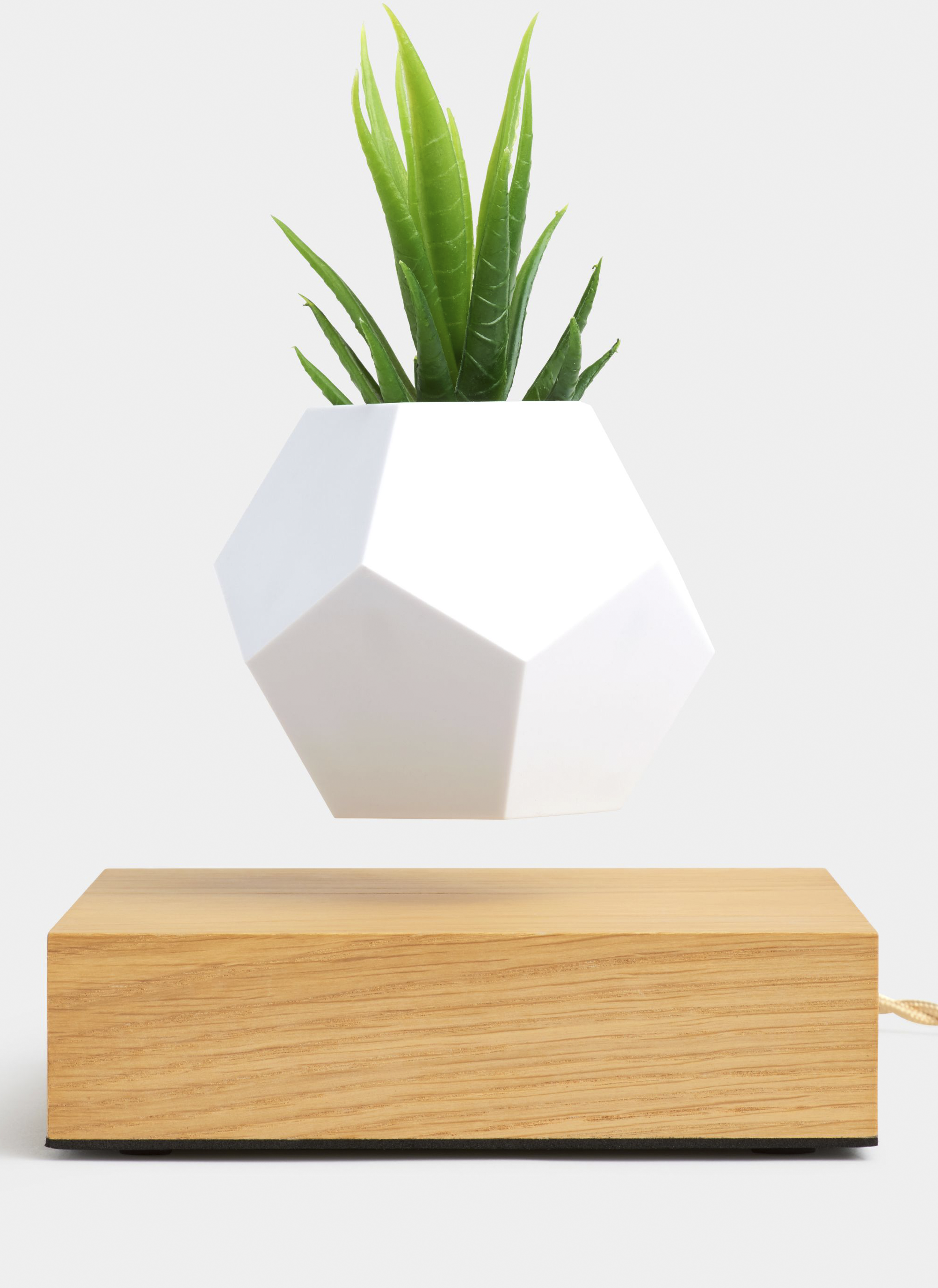 $300 - LYFE floating plant   I've wanted one of these for so long after seeing it in a friends apartment! Not sure exactly how it works, but I think its SO cool!!!! I'd be ecstatic if this was gifted to me!