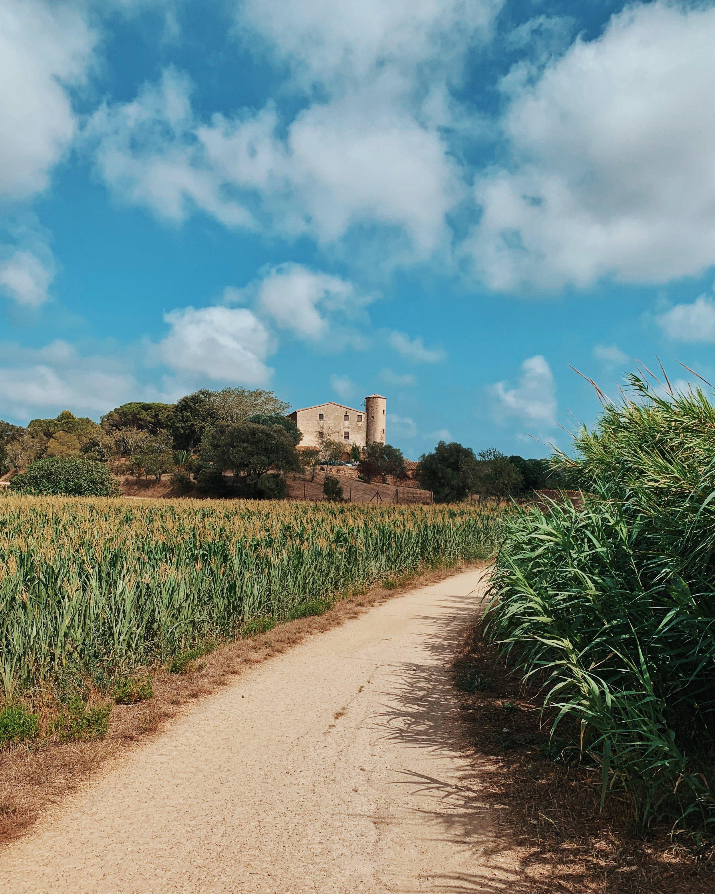 Road biking from Tossa de Mar to Llafranc