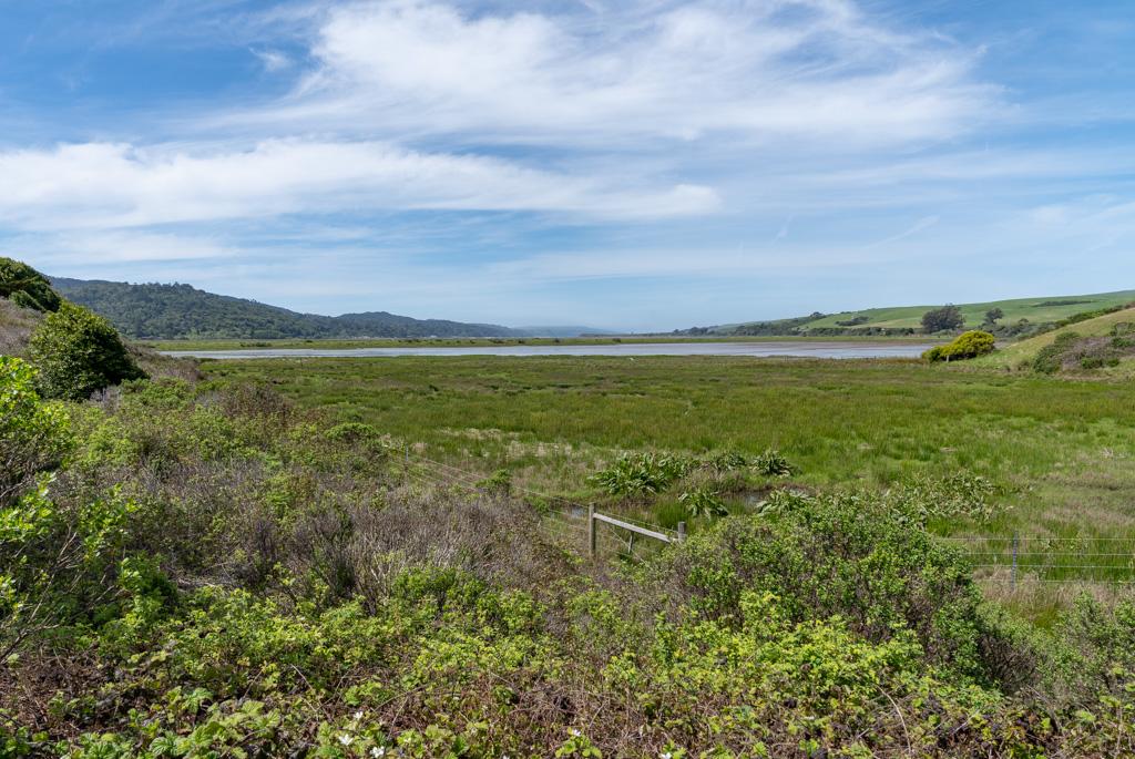 Tomales Bay (3 of 11).jpg