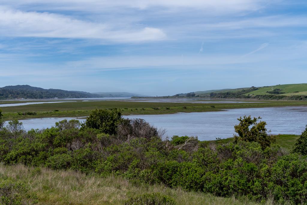 Tomales Bay (4 of 11).jpg