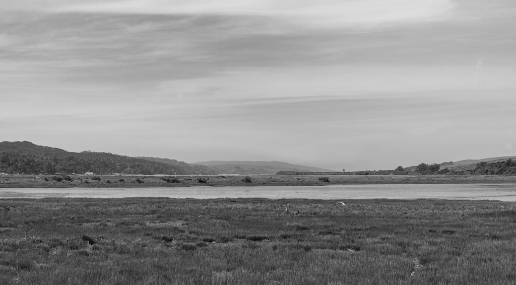 Tomales Bay (5 of 11).jpg