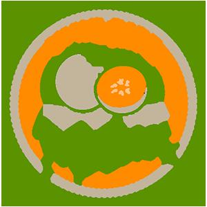 Vine-Ripe-Melons-Logo-419X417.png