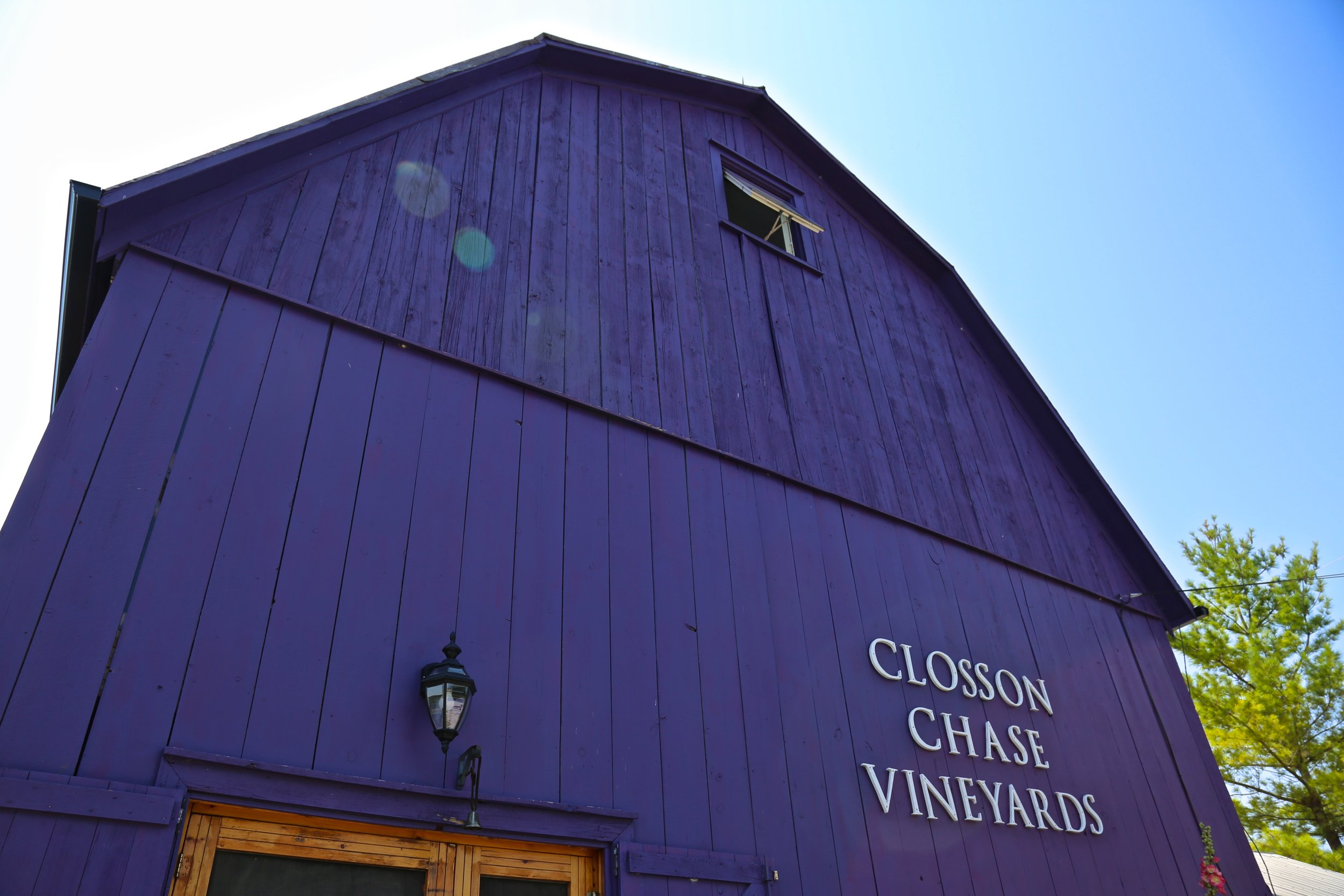 Closson Vineyard