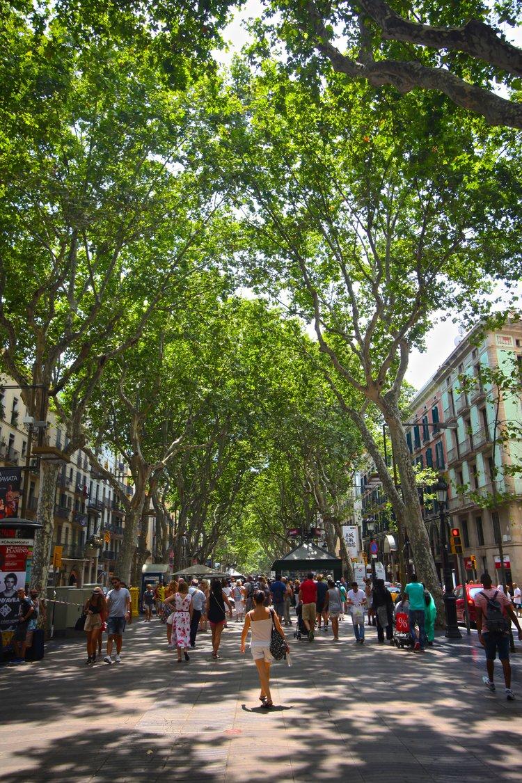 La Rambla , Barcelona