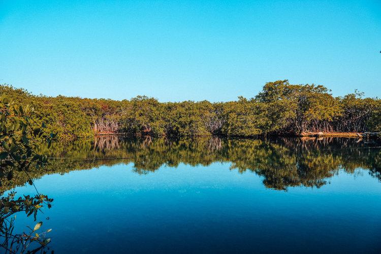 Cenote-1.jpg