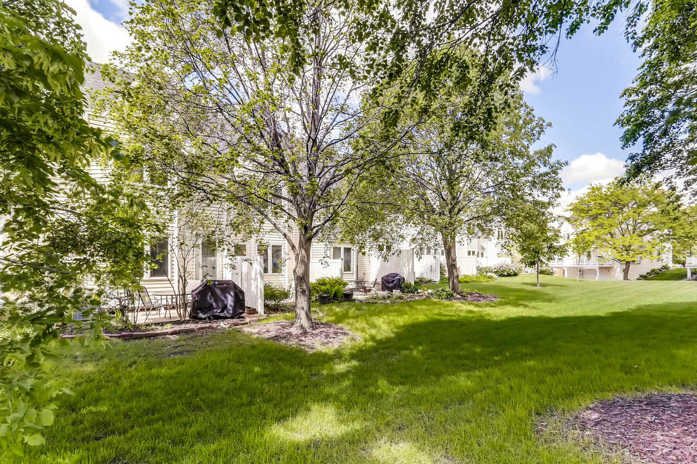 205 University Ave NE-large-024-21-Back Yard-1500x1000-72dpi.jpg