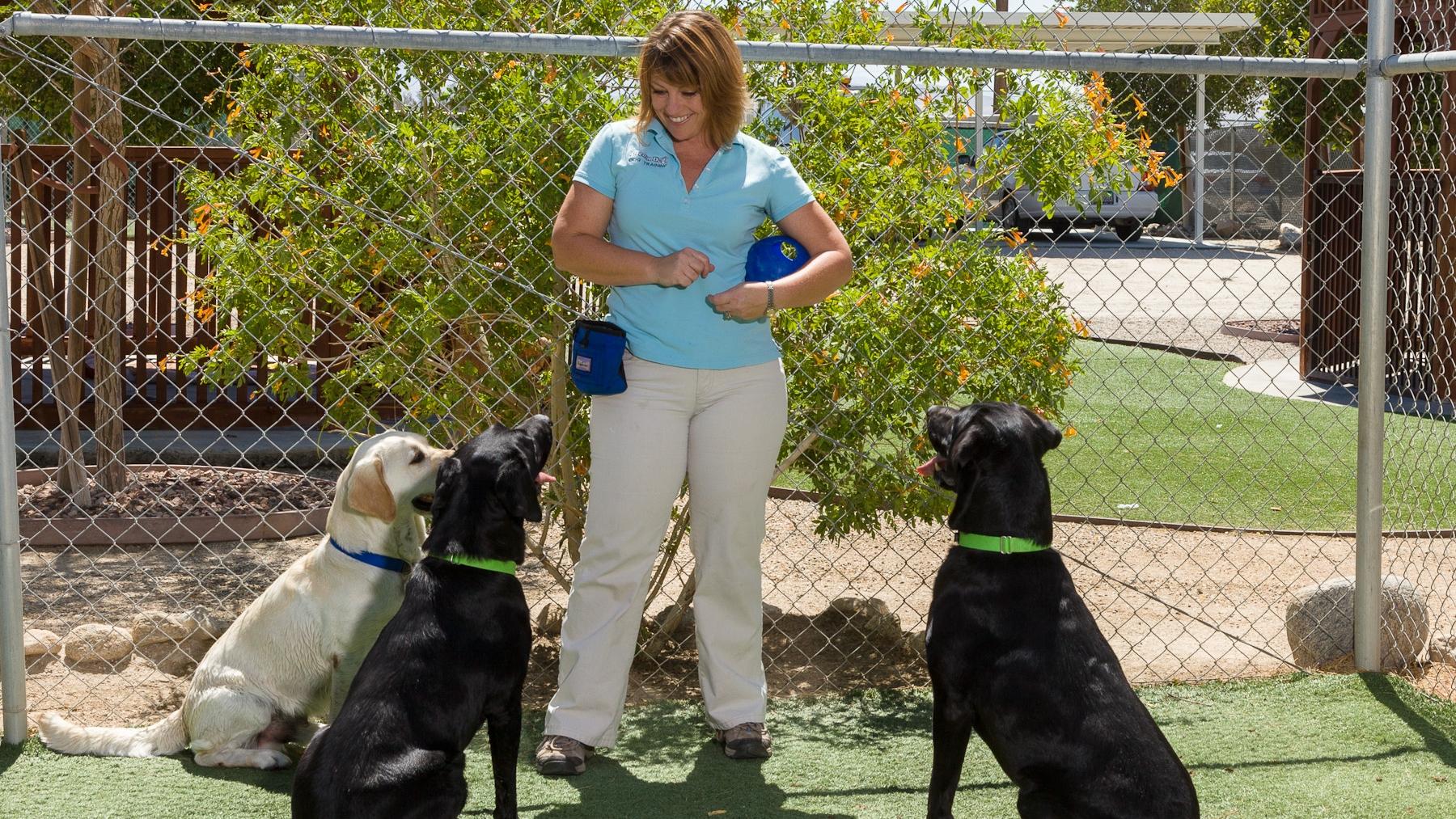 Lori at Orphan Pet Oasis