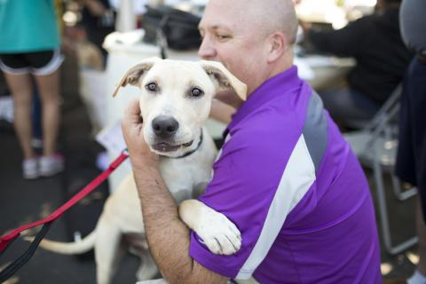 Images from PetSmart Charities adoptions