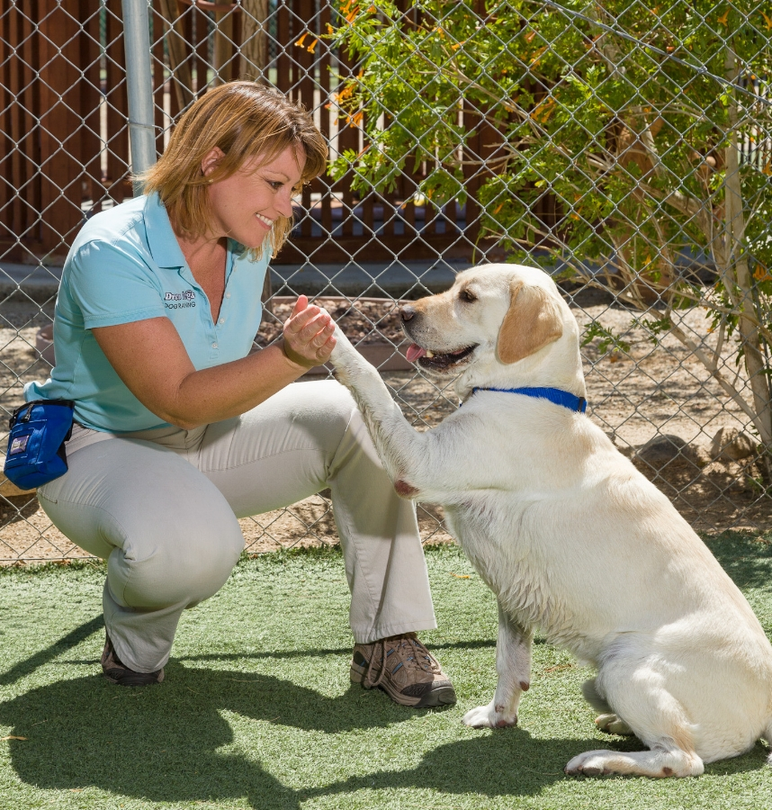 Lori with Yellow Lab