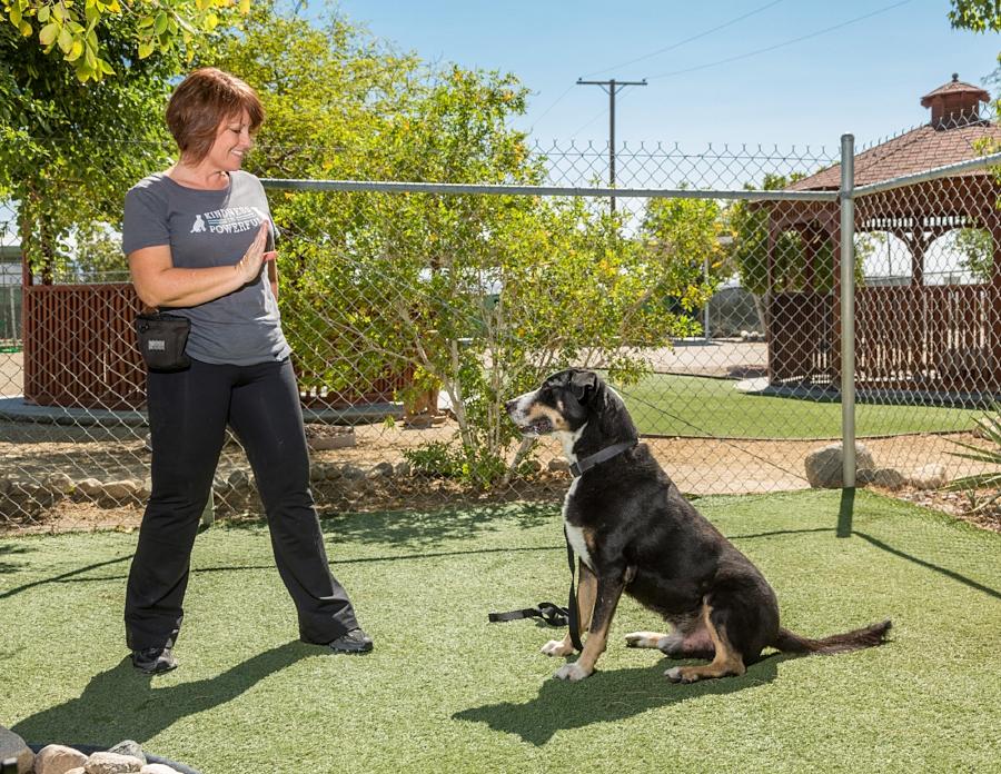 Lori and Dog