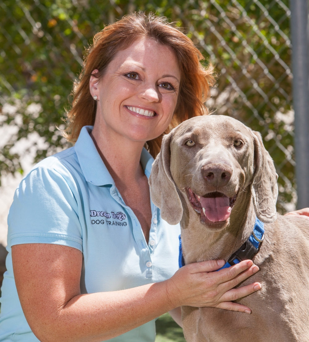 Schedule time for just you, Fido and one of Dream Dogs' expert trainers    Private Sessions