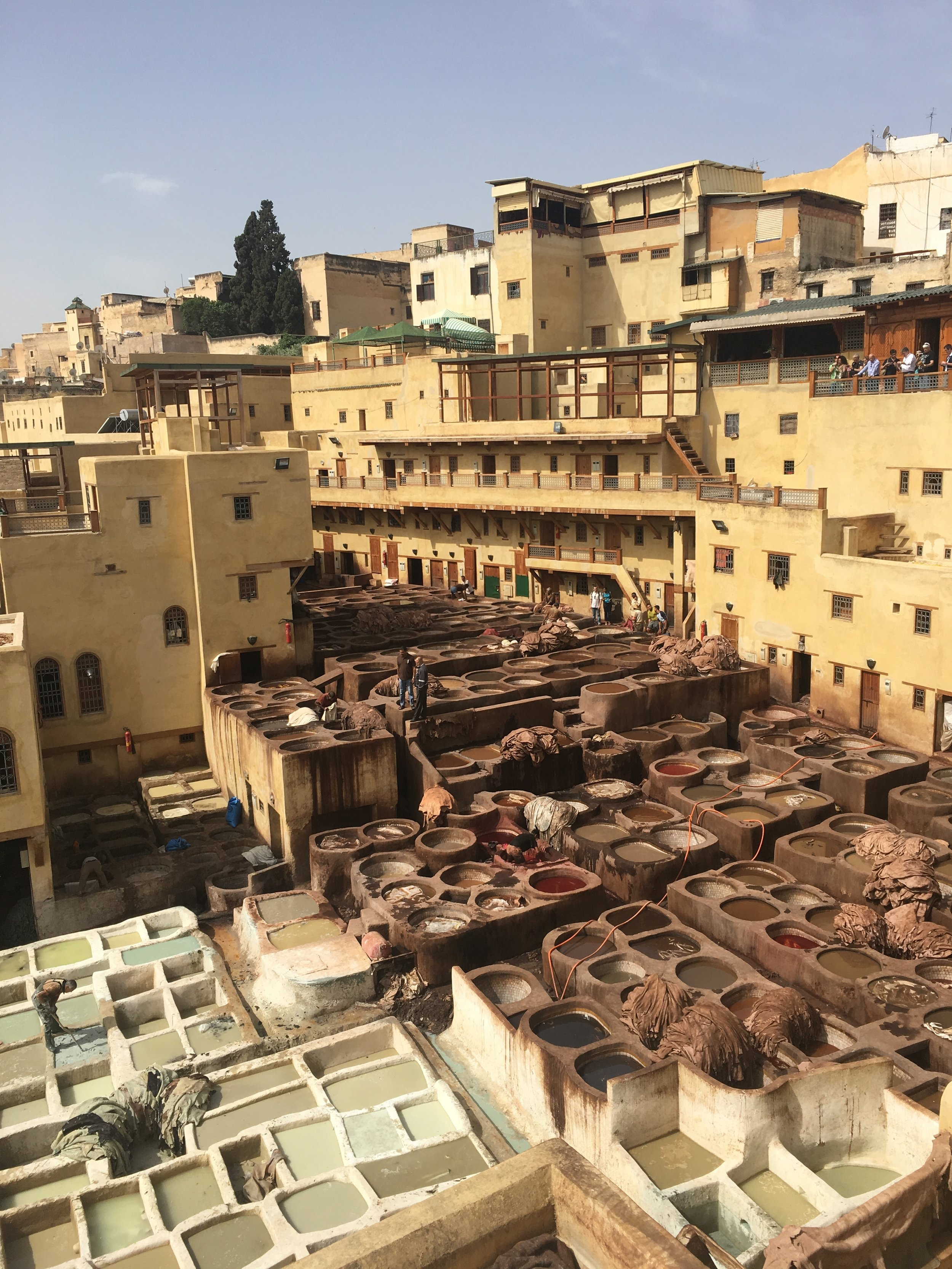 "The view overlooking the tanneries in Fes....you're lucky this isn't a ""scratch and sniff"" blog!"