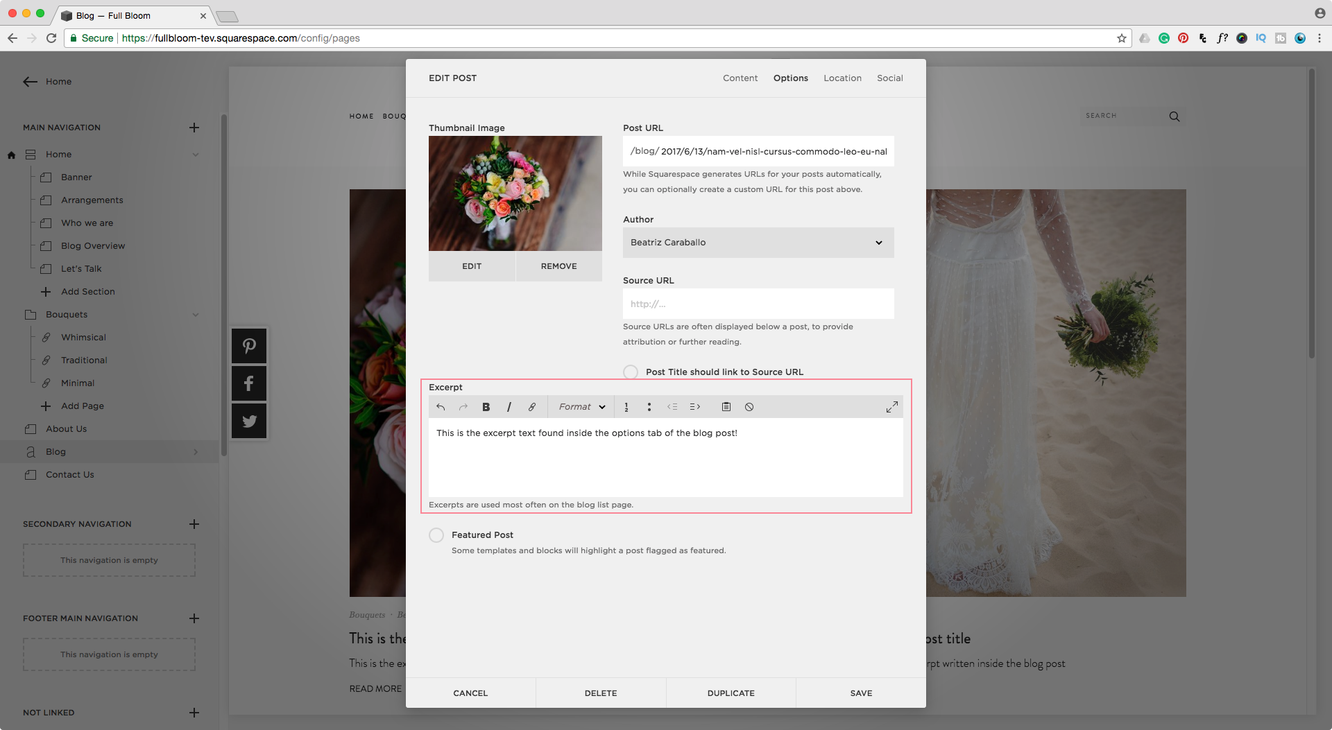 Edit a blog post excerpt text in Squarespace