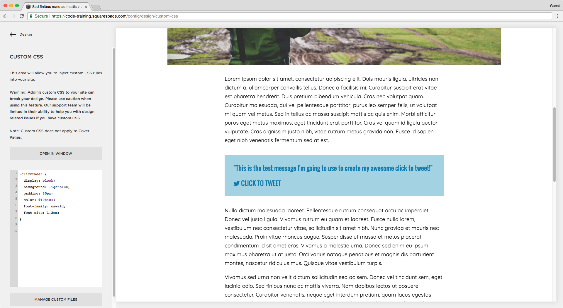 Changing the font of a tweetable quote in Squarespace