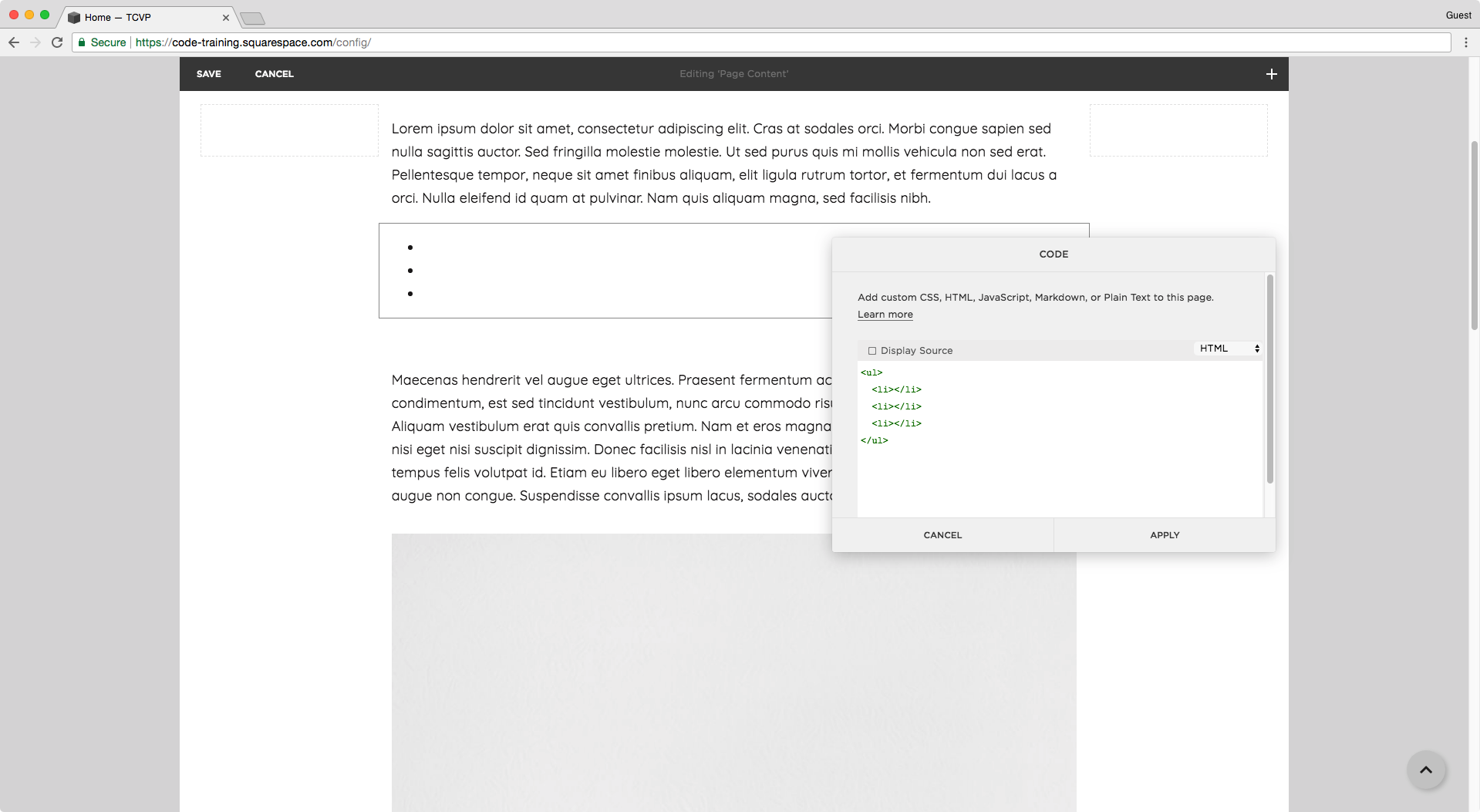 Creating an unordered list in Squarespace.