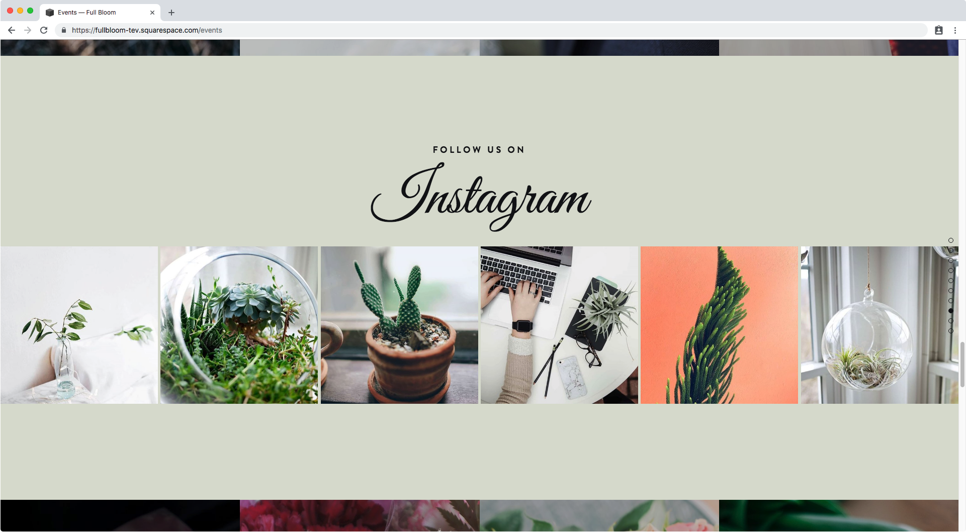 10. Instagram strip in Brine index section Squarespace.png