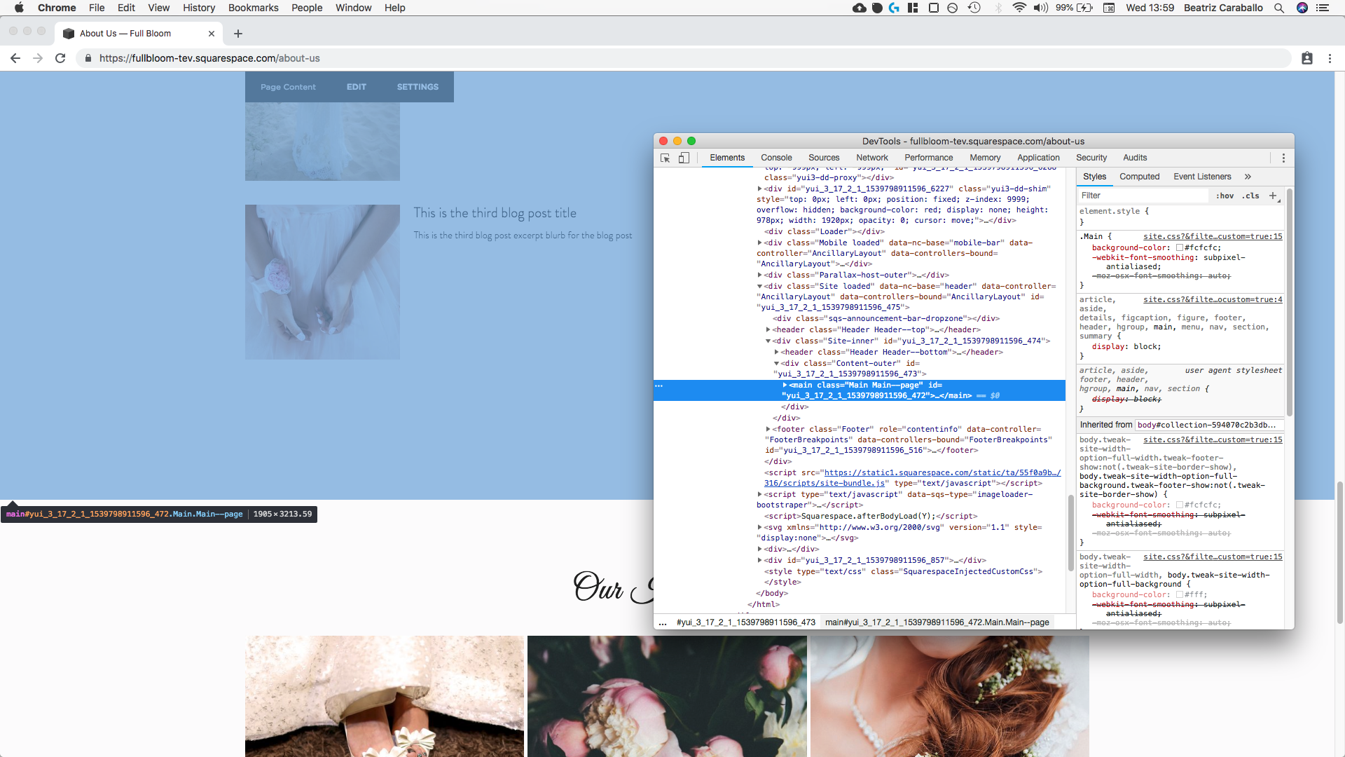3. Targeting page content minus footer in Squarespace.png