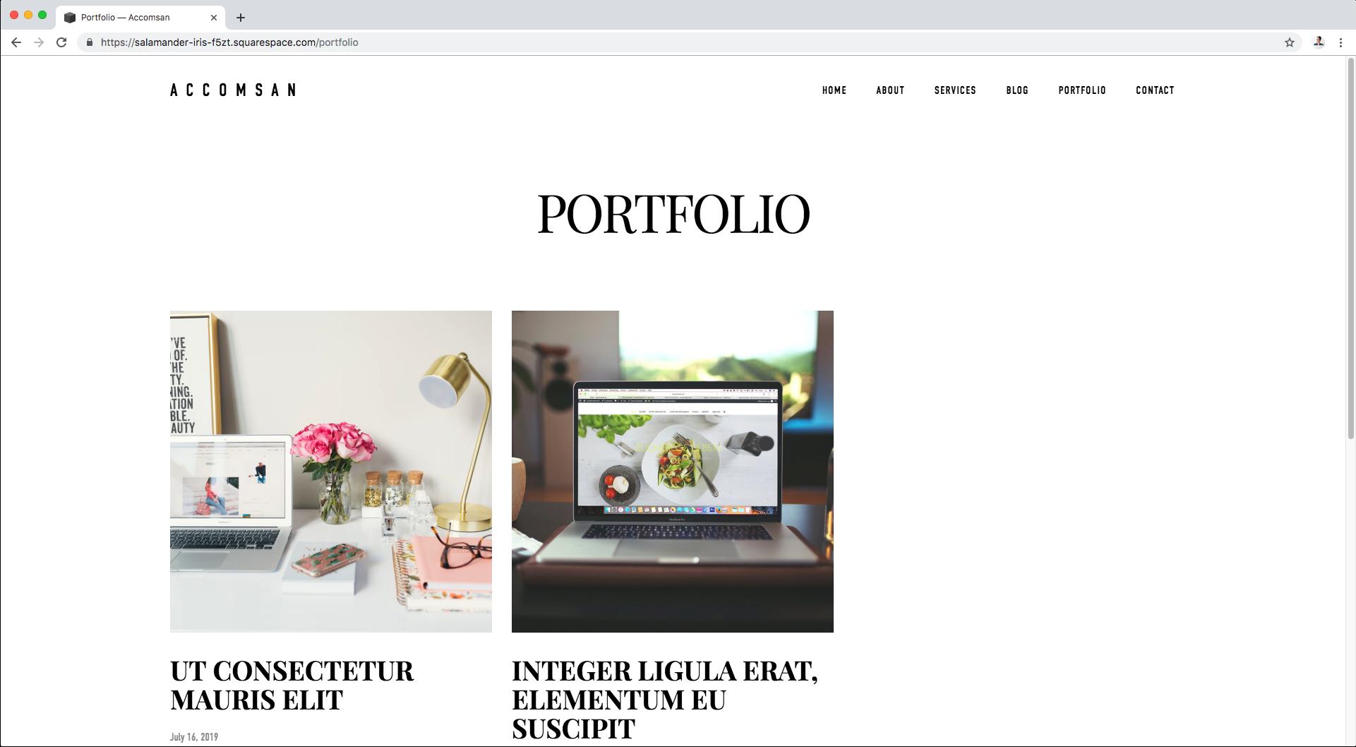 2. Portfolio page.png