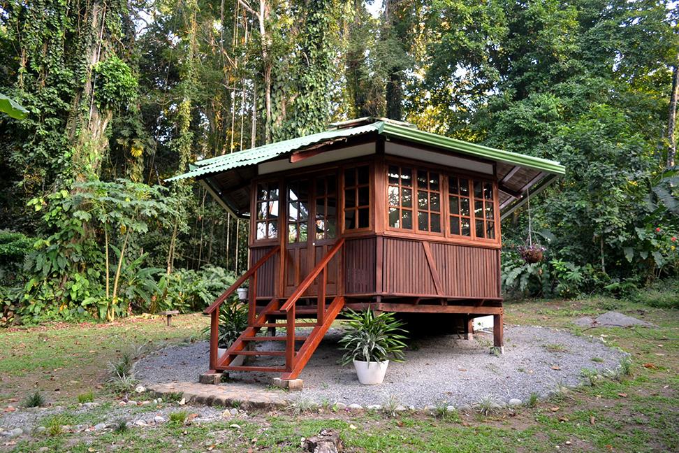 La casita consultorio en el bosque