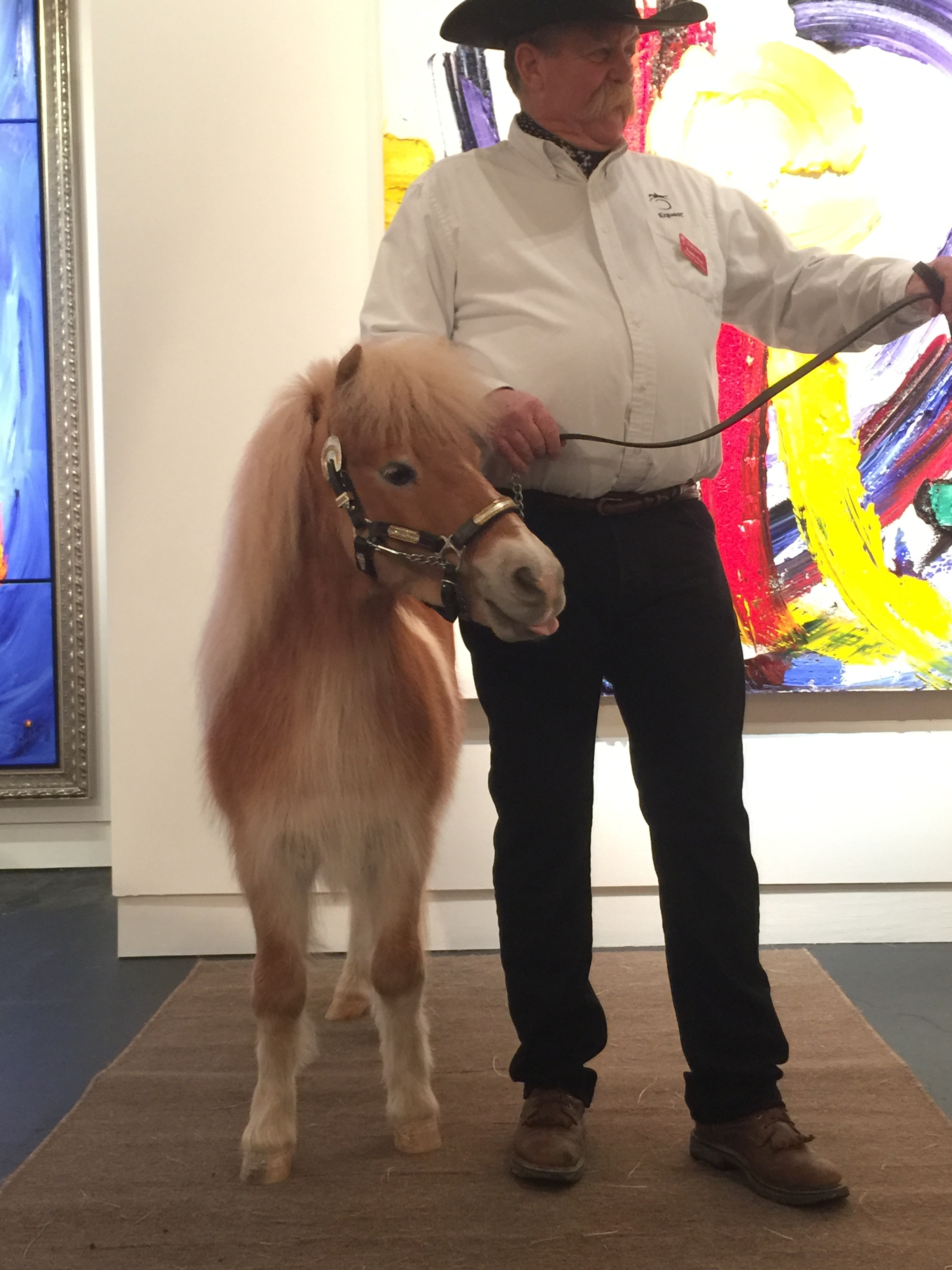 Dare, one of our mini ambassadors, and Randy Hurt at the Samuel Lynne Gallery for Equest's Gala Kick-off Party in January 2017.
