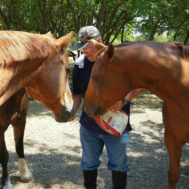 Mike feeds the Equest Therapy Horses treats during Freedom Day 2017