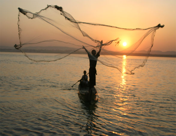 fish-net.jpg