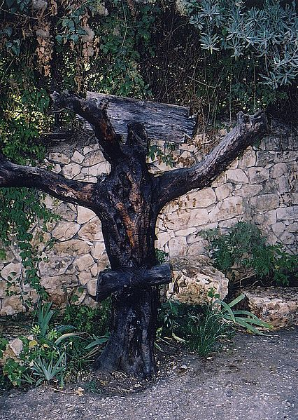 tree at.jpg